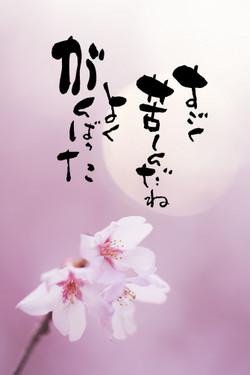 Okadatake010